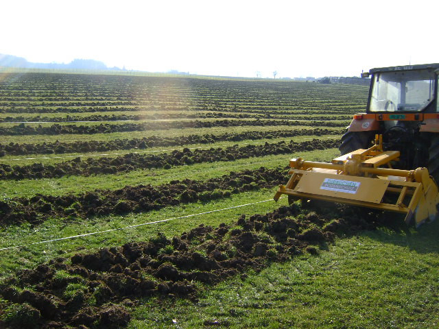 Mischende Bodenbearbeitung.jpg