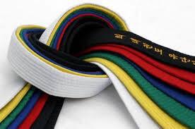 Taekwondo gradering helgen 11-12 juni