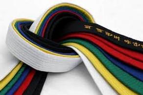 Velkommen til Taekwondo gradering lørdag 12. desember i Letohallen