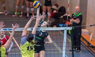 3:0 | Damen 1 - VBC Steinhausen