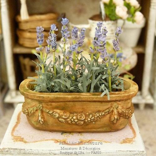 Lavande, Jardinière Toscane Miniature en Terre Cuite, Maison de Poupée,