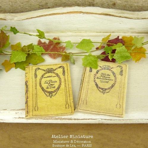 Deux livres anciens de collection (fermés), Miniatures en papier, Échelle 1/12