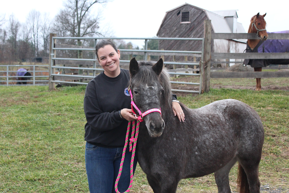Our only black friday purchase...Abby, just arrived from the kill pen