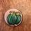 Thumbnail: Barrel Cactus Stethoscope ID