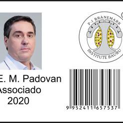 Luis Padovan - carteira digital PIBI.jpg