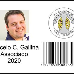 Marcelo Gallina - carteira digital PIBI.
