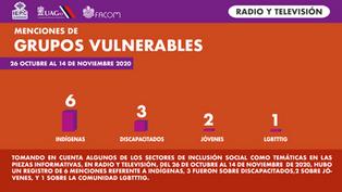 Grupo vulnerable radio y TV.png