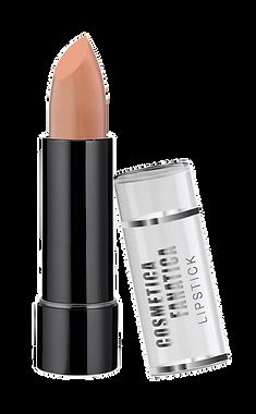 000300-63-basic-lipstick.png