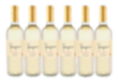 Pinot Grigio 6 Case.png