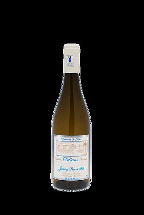 DOMAINE DE SAINT AVIT - Chardonnay-blanc tranquille