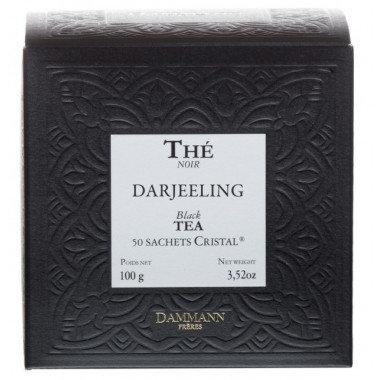 Infusettes Darjeeling