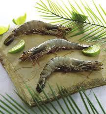 Gambas crues ou cuites taille grosse pêche Atlantique Centre-Est