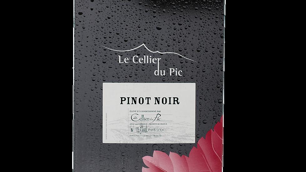 CELLIER DU PIC - Pinot Noir