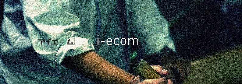 to i-ecom main website