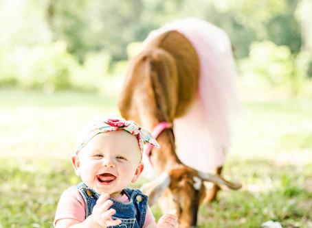 Kid's Farm Birthday Parties {and Emelia's Milk Bath Photos}