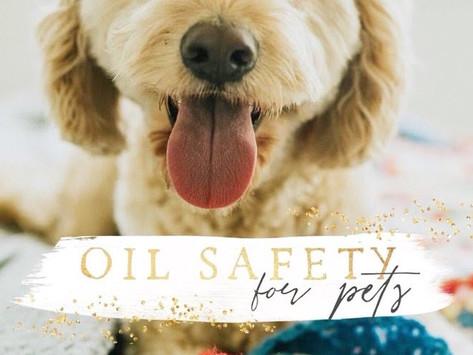 Oils + Pets Safety