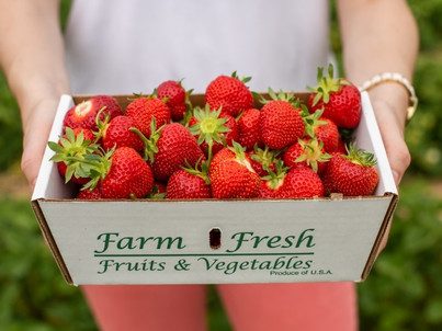 Something to Do: Strawberry Pickin'