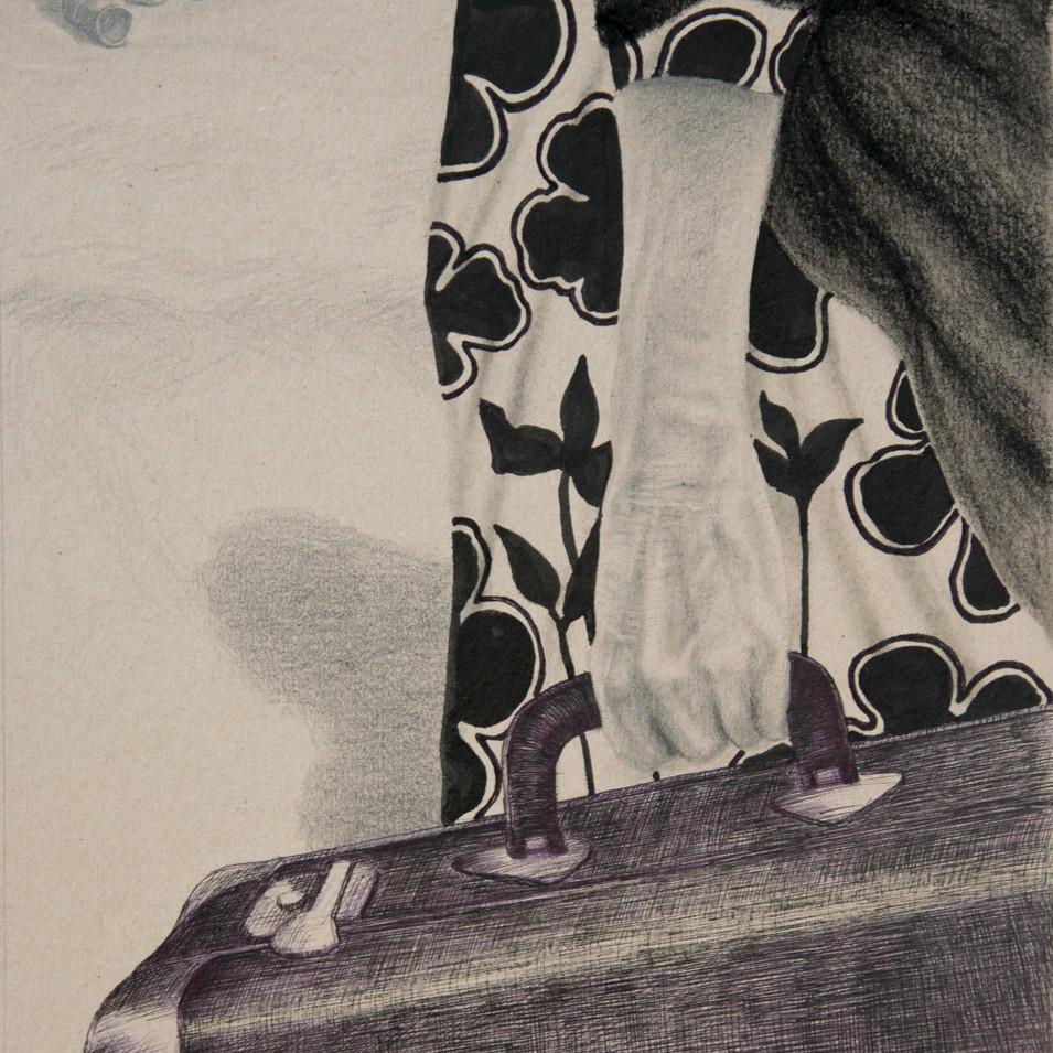 Hamid Pourbahrami, Femme avec valise