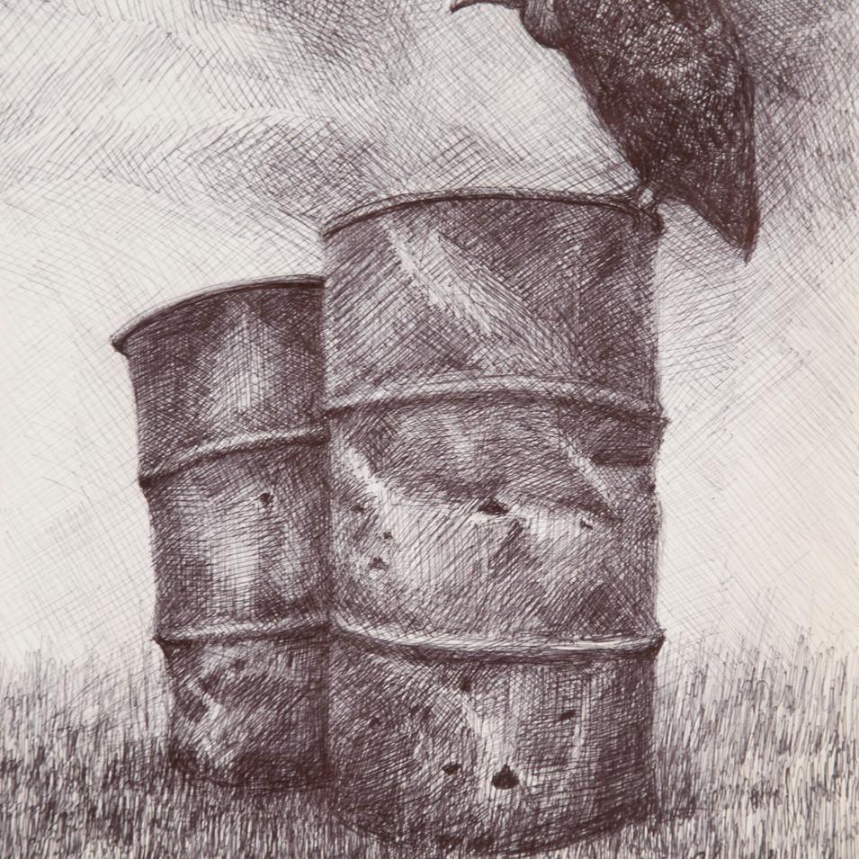 Hamid Pourbahrami, Barils de pétrole & vautour