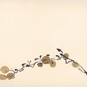 Raisins, aquarelle, 15* 24cm