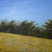 Azadeh Yavari, Wind of Damavand, oil s