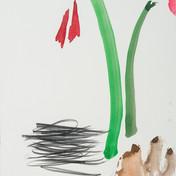 Amaryllis, aquarelle & crayon, 29 * 39 cm