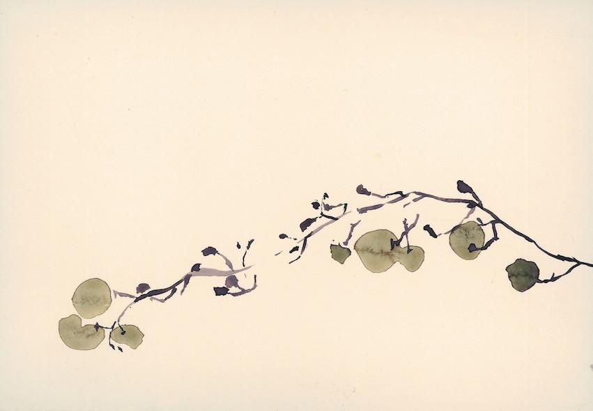 Ann Loubert, Raisins
