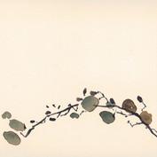 Ann Loubert, grape, 15x24cm.jpg
