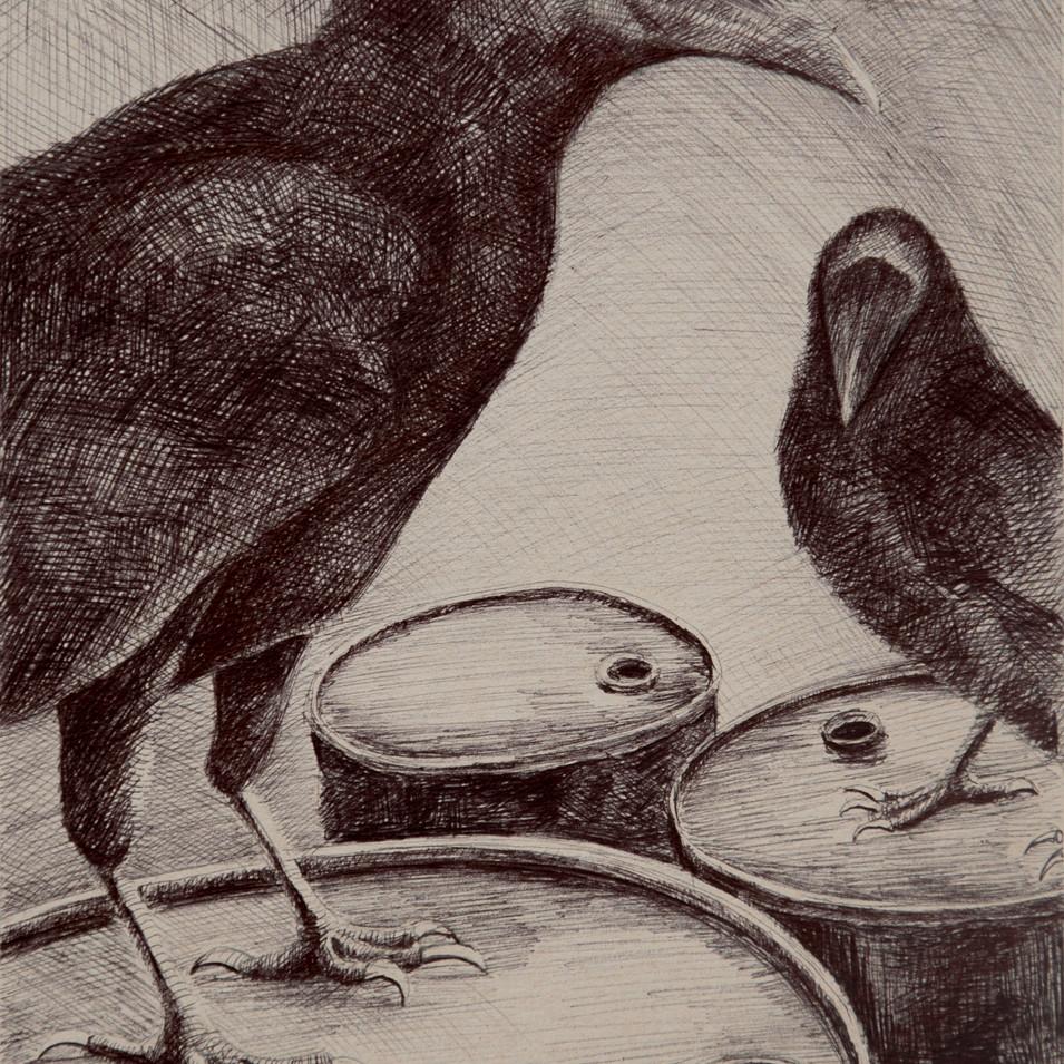 Hamid Pourbahrami, Corbeaux noirs & barils