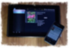 Tablet -  iPhone - iPad.JPG