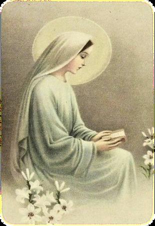 consagracion mariana imagen.png