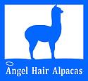 Angel Hair 1.png