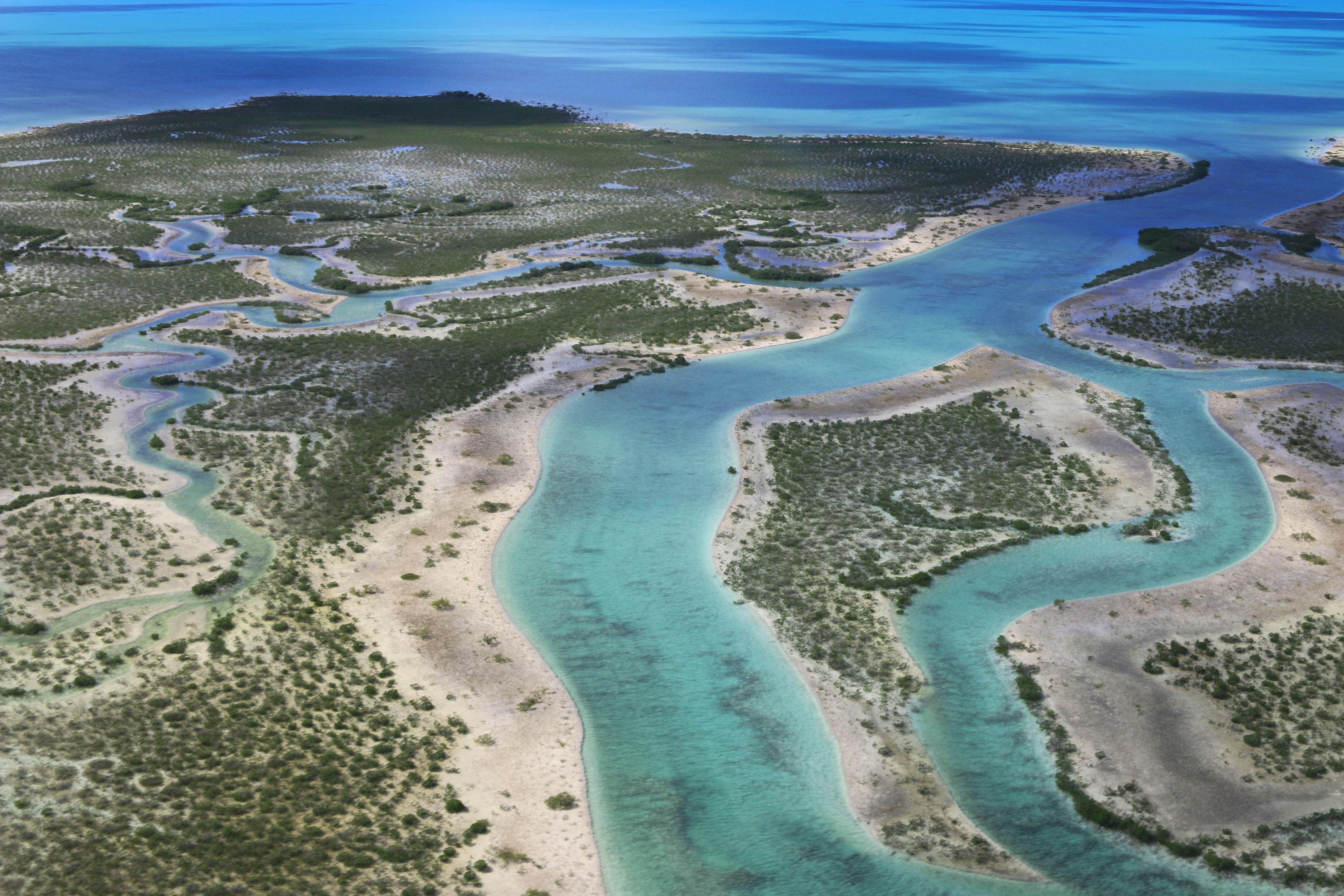 Andros wetlands, Bahamas