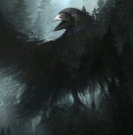 Little Raven Farm Logo.jpg