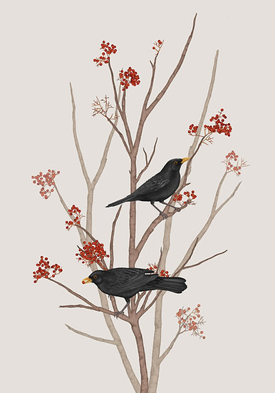 BLACKBIRD ON ROWAN TWIG 2