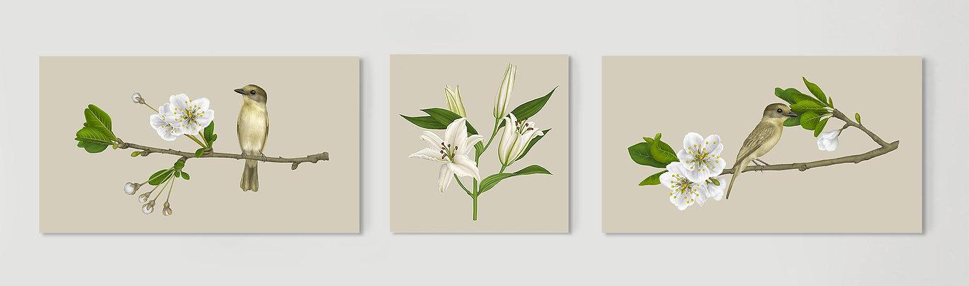 lalia-trio.jpg