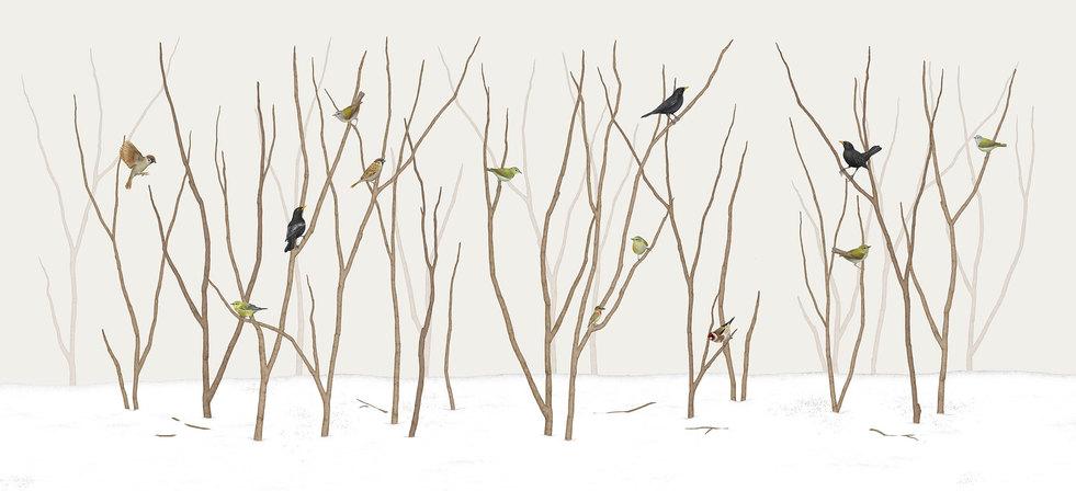 birds-on-twig-xs.jpg