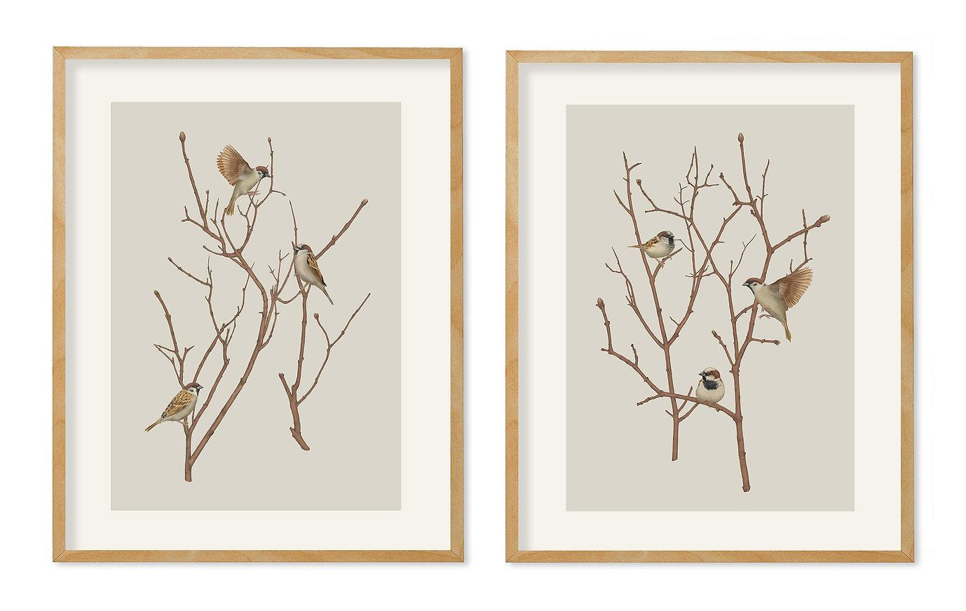 sparrows-on-twig-ram-xs.jpg
