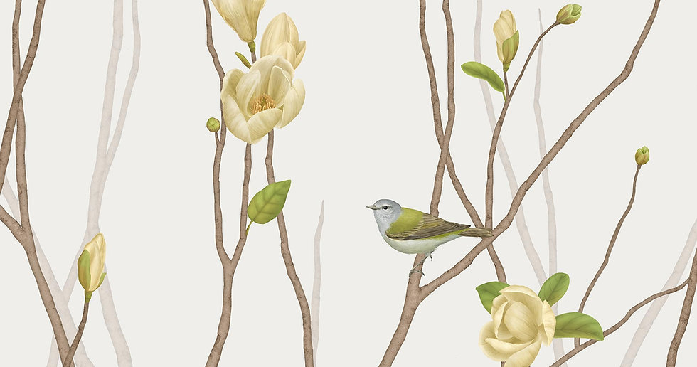 TENNESSEE WARBLER ON TWIG WITH MAGNOLIA