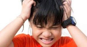 I think I have head lice but I have nothing in my hair?