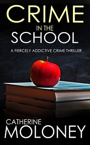 crime fiction book crime in the school