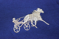 Horse Embroidery Gold Thread