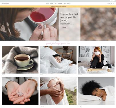 pro wix ecommerce website