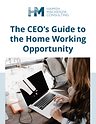 CEO_Guide_to_Home_Working_Opportunity_Fi