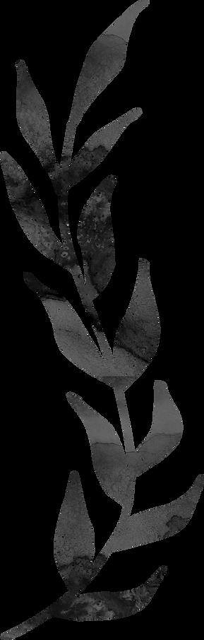 floral_0025_m.png