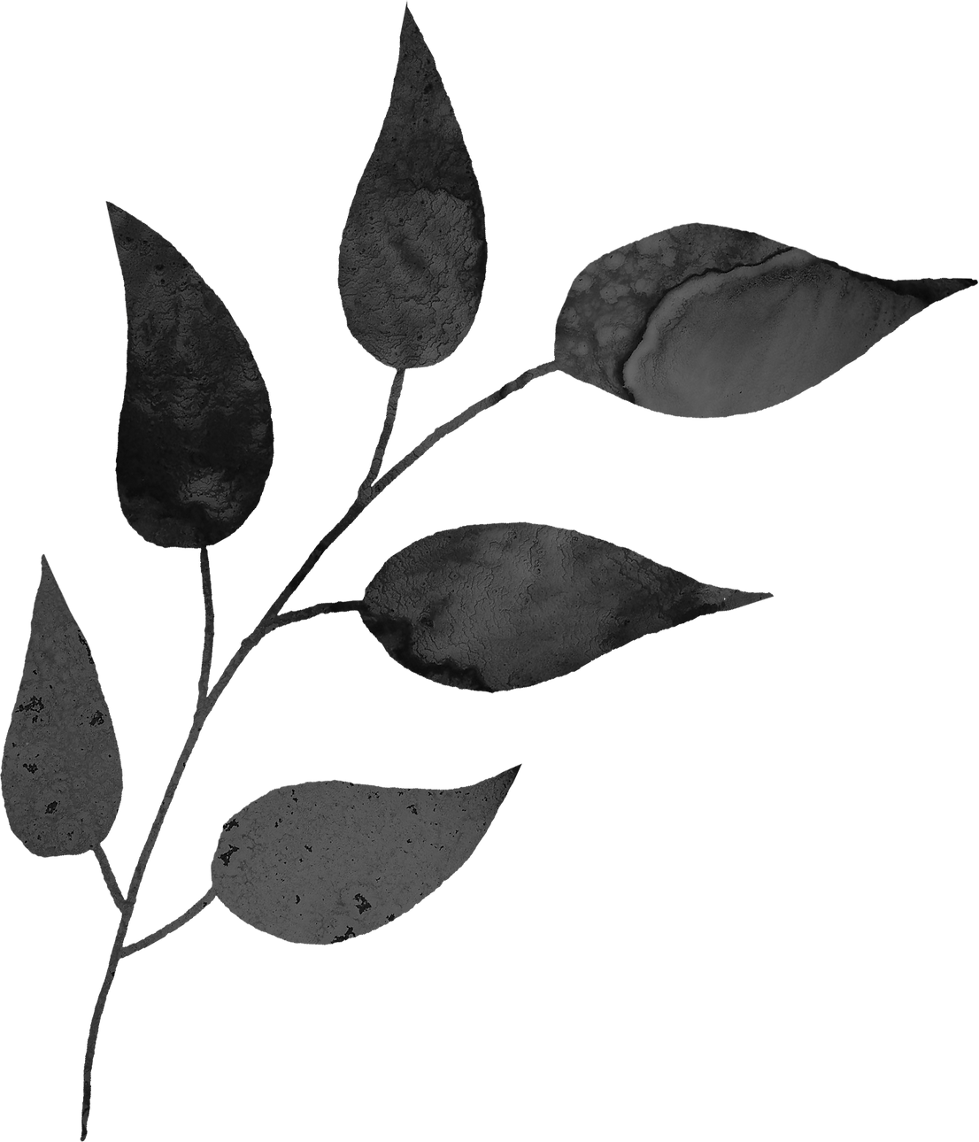 floral_0026_m.png