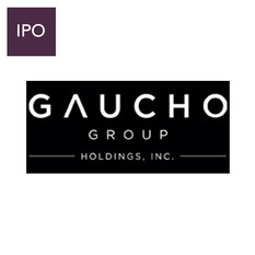 Gaucho Group Holdings, Inc.