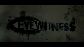 The Fallibility And Relevance Of Eyewitness Testimony