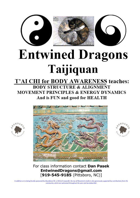 Entwined Dragons Body Awareness (2)-1