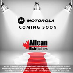Motorola Teaser
